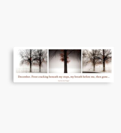 Winter Triptych Canvas Print
