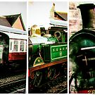 Steam on the Bluebell Line by bywhacky