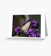 Crimson-speckled moth Greeting Card
