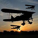 Fly Past by John Dalkin