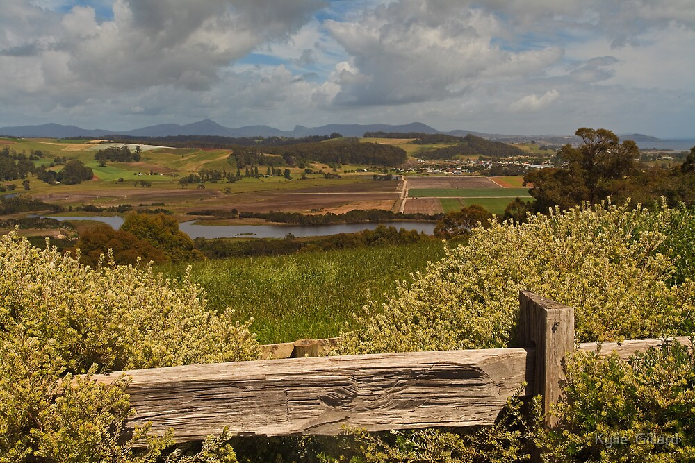 View from Braddon's Lookout by Kylie  Sheahen