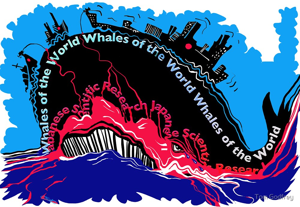 Whales of the World by Tom Godfrey
