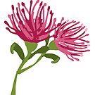Australian native Grevillea by thatsgraphic