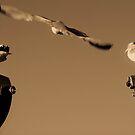 Three Little Birds by Lindsey W