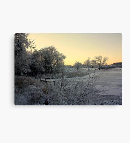 Town Lake - Frozen  Canvas Print