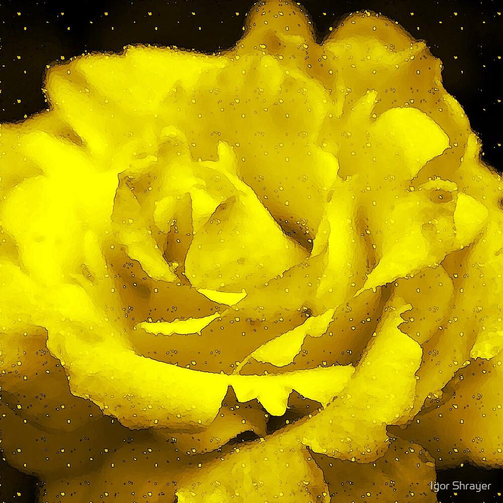 Yellow Rose by Igor Shrayer