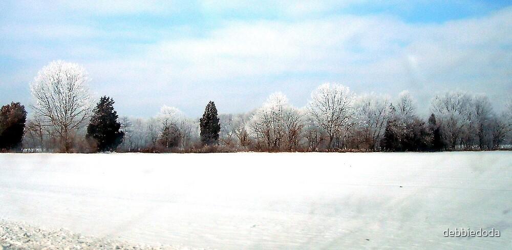 Snow Forest by debbiedoda