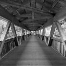 the bridge by lukasdf