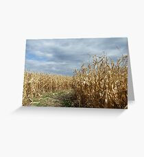 End of Maze, Ithaca Sound Maze Greeting Card