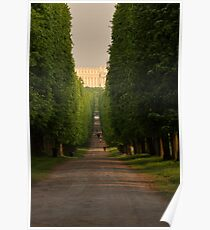 Versailles Tree Lined Road Poster