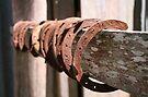 Old Rusty Horse Shoes by John Bullen