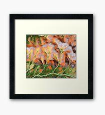 """""""Golden Trees""""  Framed Print"""