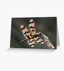 Graphic flutterer Greeting Card