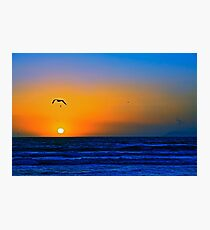 Colors Of Love Photographic Print