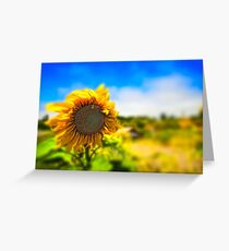 You Are So Beautiful To Me Greeting Card