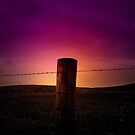 PURPLE SUNSET by leonie7