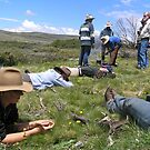 Relaxing in the Victorian High country...Ahhh by Sue-Ellen Cordon
