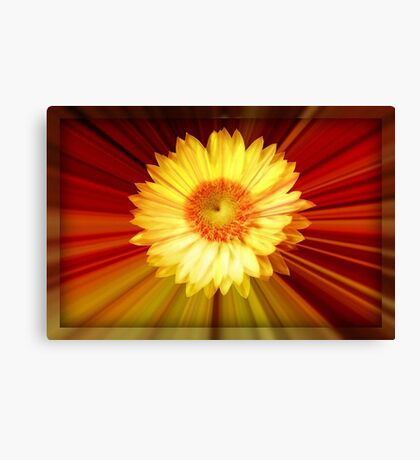 Sunshine and Lollipops ©  Canvas Print