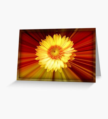 Sunshine and Lollipops ©  Greeting Card