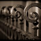 Fences by Lance Jackson