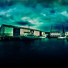 Queens Wharf, Wellington - New Zealand by Derek Kan