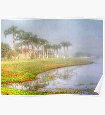 Florida Palms Poster