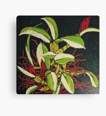 Bitter Fruits Canvas Print