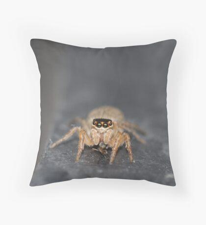 Luv a bug Throw Pillow