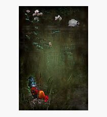 """""""Rustle Continued ....he felt as though he was being watched..."""" Photographic Print"""