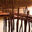 The Boardwalk by Kerry Dunstone
