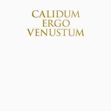 calidum ergo venustum by noahlicious