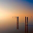 Peace by Brian Tarr