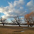 A coldy windy day at the lake by HardworkinJudy