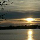 Golden Sunset Reflecting on the Lake by HardworkinJudy