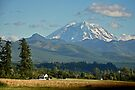 Mt. Rainier by Emilie Trammell
