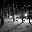 Snow in winter park by Alexander Davydov