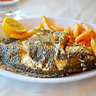 St. Peter's Fish from the Sea of Galilee by Carol Clifford