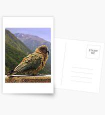 Kea Postcards