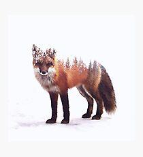Fuchs Fotodruck