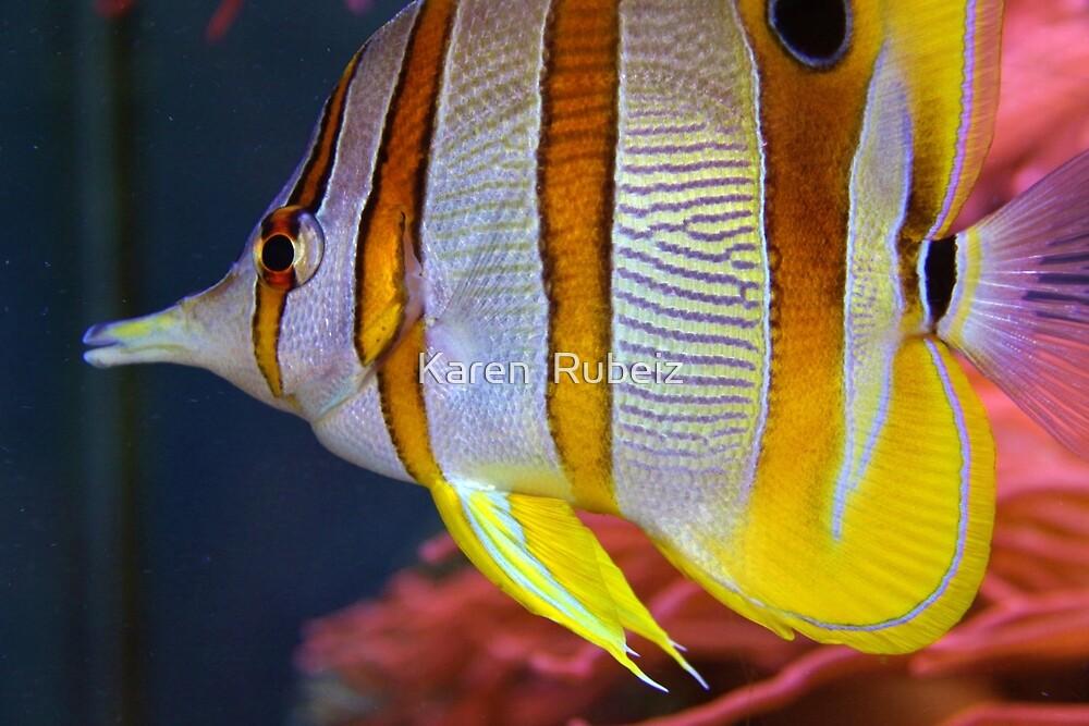 Butterfly Fish by Karen  Rubeiz