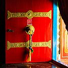 The Red Door by Vikram Franklin