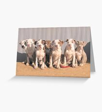 My Little Rascals Greeting Card