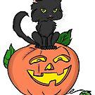 Black Cat & Pumpkin  by rmcbuckeye