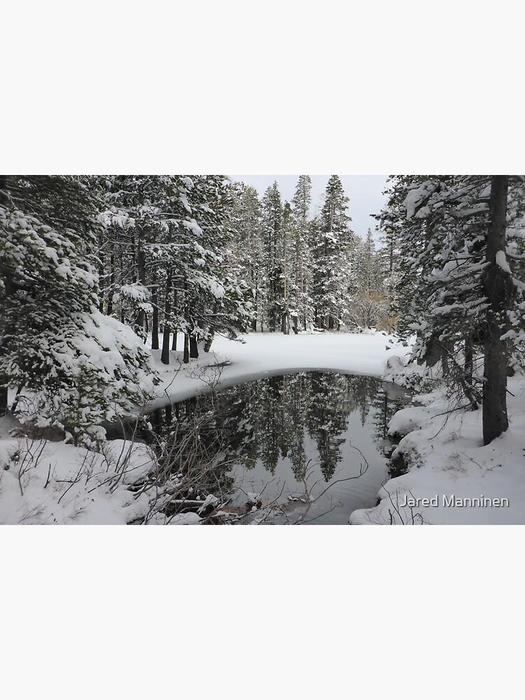 Snowy Pond by JaredManninen