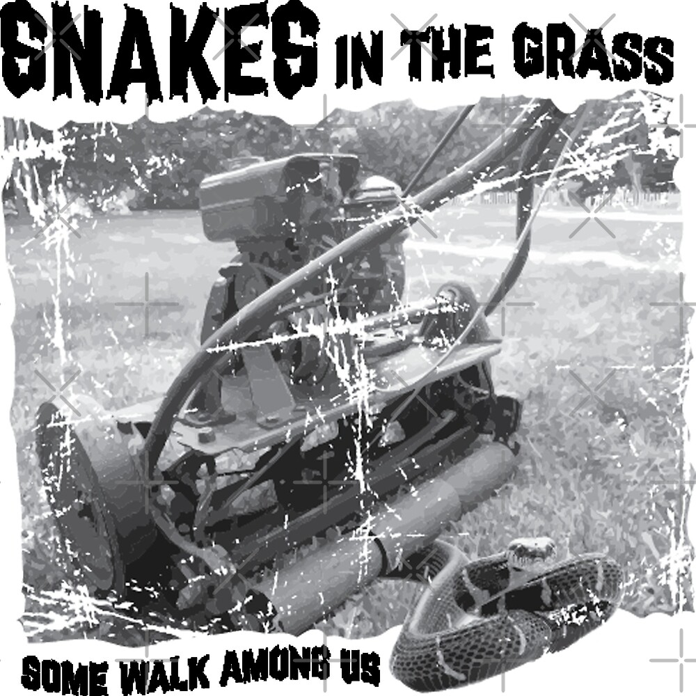 Snakes in the GRASS by SayWhatJAY