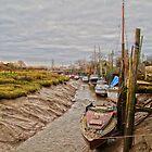 Skippool Creek by Peter Stone