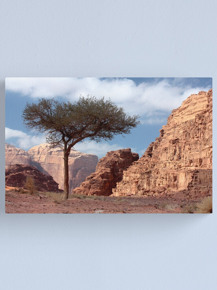 Alternate view of Wadi Rum Canvas Print