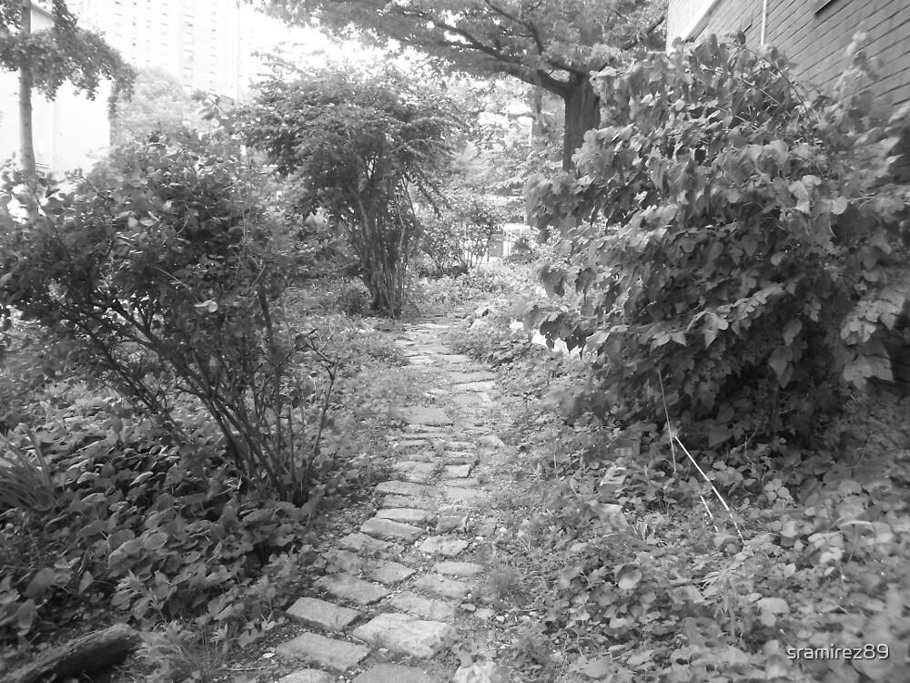 Secret Garden by sramirez89