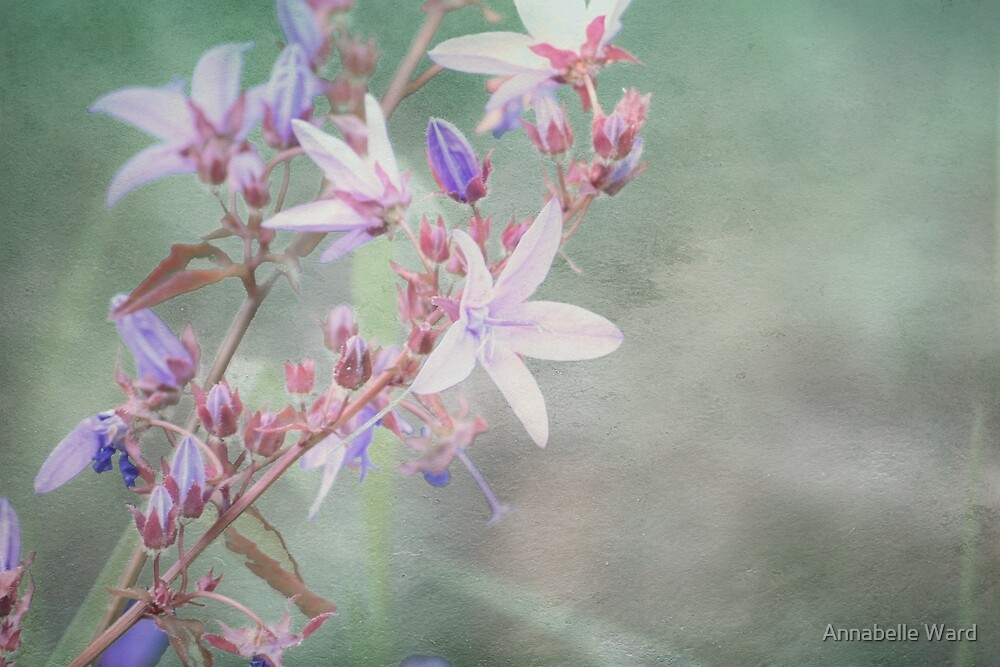 Lilac Looking Glass Flower by Annabelle Ward