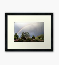 Allude illusion Framed Print